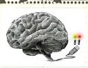 Gallery of Human Brain International Cartoon Exhibition 2016